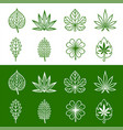 abstract leaf line icons set vector image