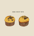 banana chocolate chip muffins in paper cases vector image vector image