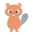 cute little beaver animal cartoon isolated design vector image