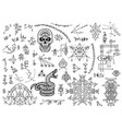 design set with mystical symbols skull snake vector image vector image
