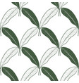 floral seamless pattern with mango fruit leaves vector image vector image