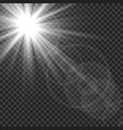 sunlight isolated sun rays light lens flare glare vector image vector image