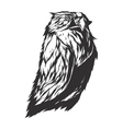 Angry owl sign vector image vector image