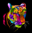 colorful tiger face isolated with white background vector image vector image