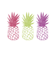 Design with pineapple vector image vector image