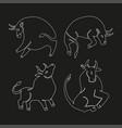 set bulls linaer stylized vector image vector image