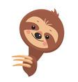 template of joyful sloth vector image