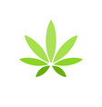 cannabis leaf on white background logo illegal vector image