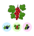 Fruit Icons Redcurrant Blackberry Blackcurran vector image vector image