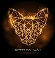 neon shpynx cat polygon silhouette
