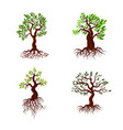 trees with green leaves and roots tree vector image vector image