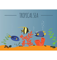 Tropical sea graphic template vector image vector image