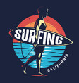 vintage surfing sport colorful logo vector image