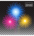 Shiny tricolor firework on the dark sky Festive vector image