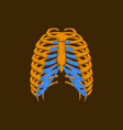 flat shading style icon chest thorax vector image