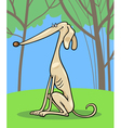 greyhound dog cartoon vector image vector image