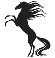 horse mane vector image vector image