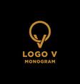 Luxury initial v logo design icon element isolated