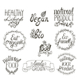 natural food hand written vector image vector image
