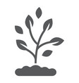 plant glyph icon farming and agriculture vector image vector image