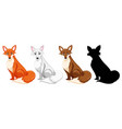 set of different fox vector image vector image