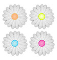 white daisy flower on background vector image vector image