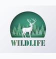 world wildlife day vector image