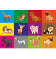 Dogs in square vector image