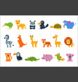 exotic animals fauna set vector image vector image