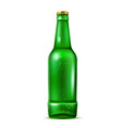 realistic green beer bottle with bubbles vector image vector image