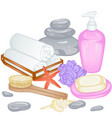 accessories for bath vector image vector image