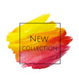 new collection banner vector image vector image