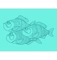 Piranha color drawing vector image vector image