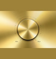 realistic metallic golden knob design vector image
