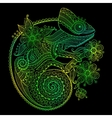 The outline of a green vector image vector image