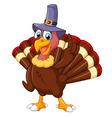 Cute turkey cartoon wearing hat vector image vector image