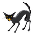 happy halloween angry cat vector image vector image