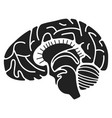 human brain icon simple style vector image