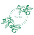round frame with branches vector image vector image