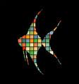 scalare fish mosaic color silhouette aquatic vector image