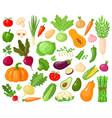 cartoon vegetables vegan veggies food tomato vector image vector image