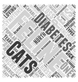 Cats And Feline Diabetes Word Cloud Concept vector image vector image
