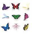 dragonflies and butterflies set vector image vector image