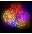 Firework vector image vector image
