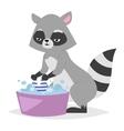 Funny raccoon vector image vector image