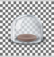 glass dome transparent vector image