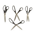 a set of tailor scissors vector image vector image