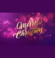 christmas lettering and xmas holiday sparkling vector image vector image