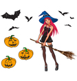 collection with witch and pumpkins vector image