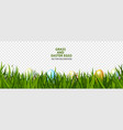 green grass with easter eggs on transparent vector image